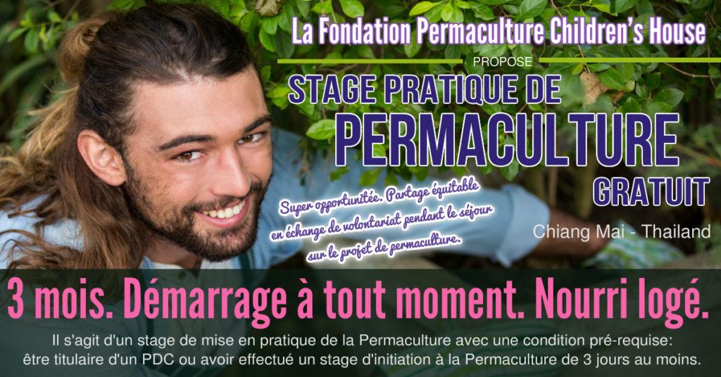 stage pratique permaculture gratuit